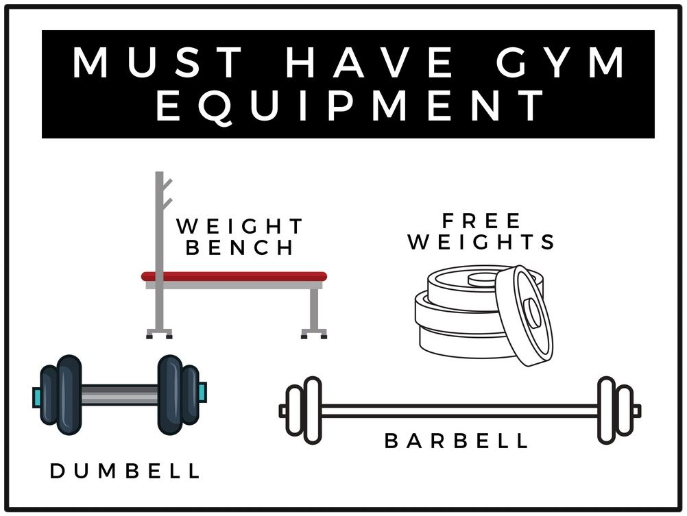 must have gym equipment with cartoon barbell, dumbell, bench press and free weights